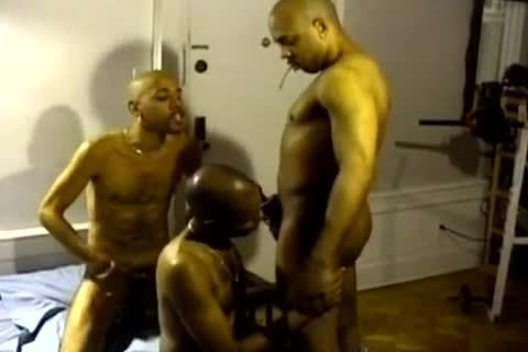 black And In The Ghetto homosexuals engulf Hard penises