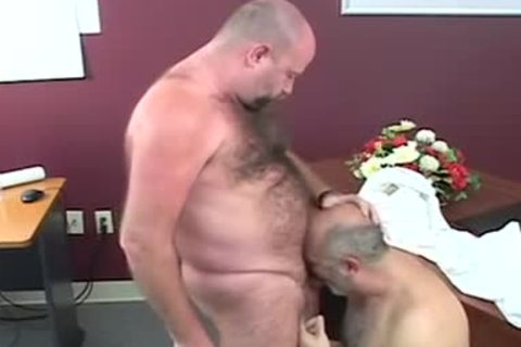 Charming chubby bears plowing after giving head