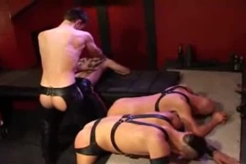 Leather ass plowing And Fisting