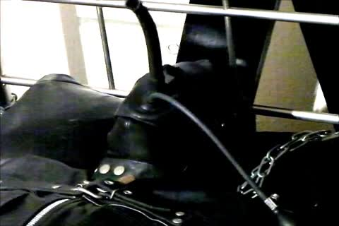 Wearing A Rubber Cat Suit Inside A Leather Body Bag handcuffed To The sofa, Hooded And Gagged, Then Teased For Two Hours Until he cum.