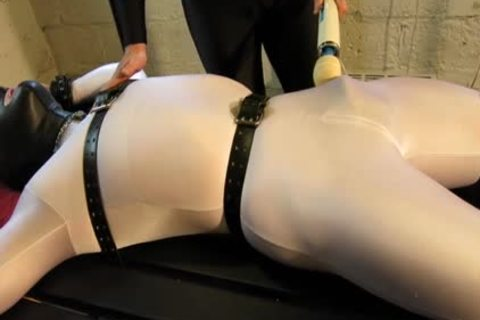 Our Live-in Pup Zathin Loooves To Be Tickled type-of. So We Put Him In something Stretchy, belted Him Down, And Decided To see How Much that man Could Take! Half-way through, We Add A Sound-activated Electro Plug Just To Keep Things Interesting. Stay