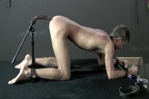 legal bondage Free gay