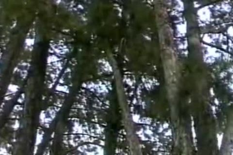 Two males Have wicked Outdoor Sex