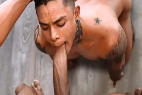 Horny gay trio sucking banging