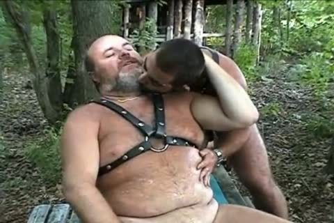 enormous Bear banging In The Woods