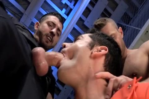 hairy homo oral-job With sex cream flow