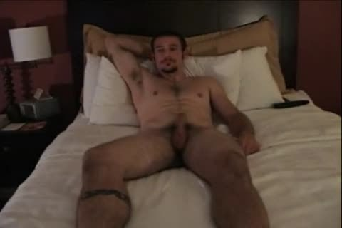 MC Marine Serviced tempted In daybed