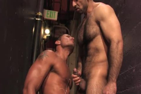 hairy homosexual ass And ejaculation