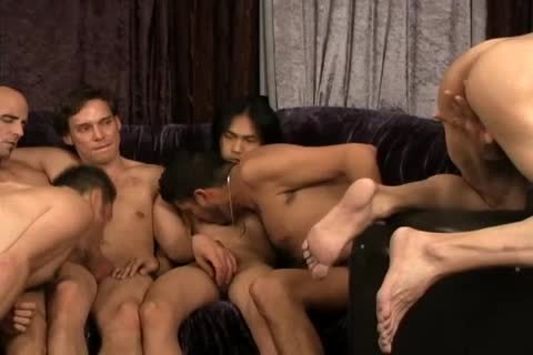 A group Of homo allies All plowing jointly