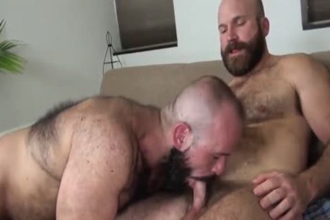Hubxdaddy two bears banging in the military camp
