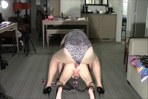 Chain slut Sissy Sex bondman meat