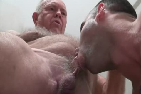 grandpa Bear pokes A pumped up young stud